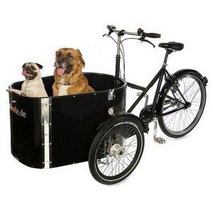 Triciclo Nihola Dog