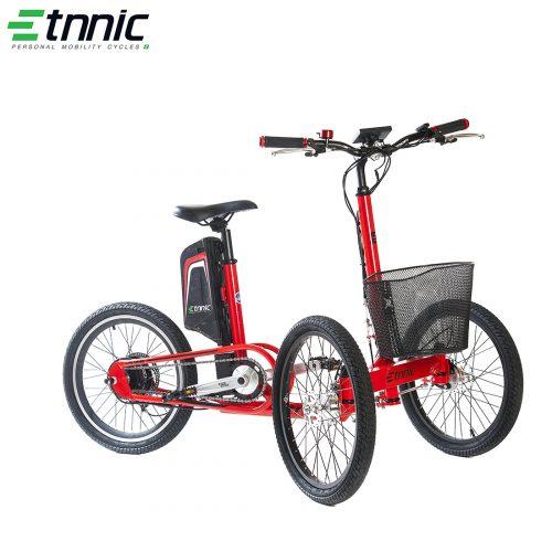 Etnnic City Trike