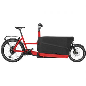 Bicicleta-eléctrica-Riese-Muller-Packster 70 touring
